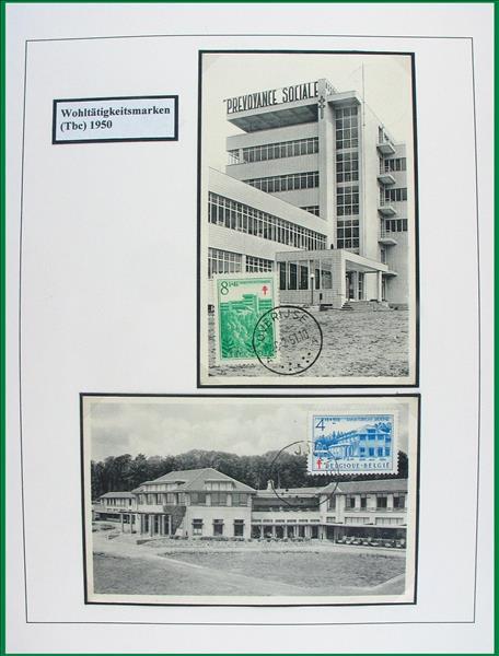 https://www.alfil.cz/catalog/15373_105_m.jpg