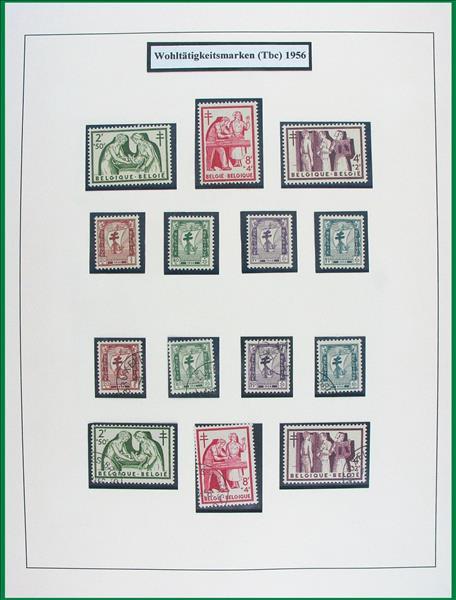 https://www.alfil.cz/catalog/15373_124_m.jpg