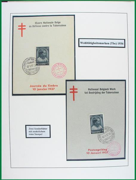 https://www.alfil.cz/catalog/15373_47_m.jpg