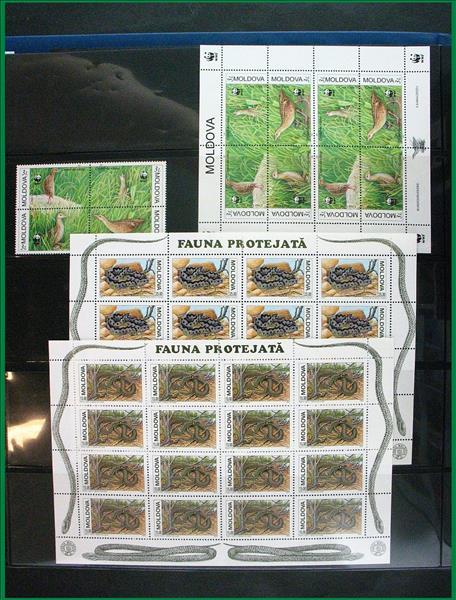 https://www.alfil.cz/catalog/18014_20_m.jpg