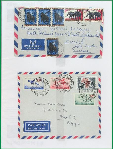https://www.alfil.cz/catalog/19844_17_m.jpg