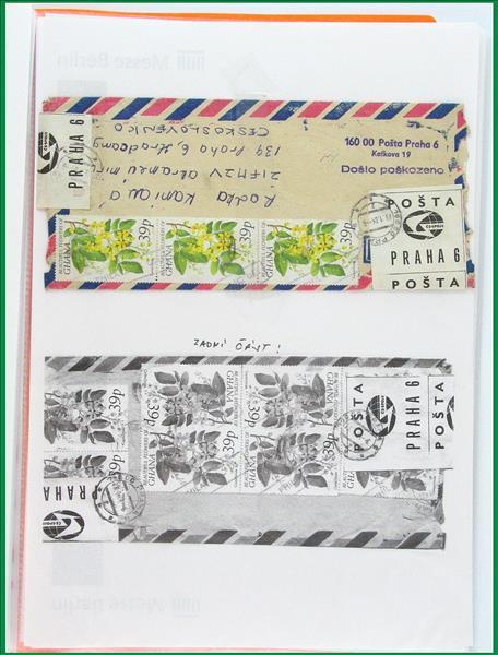 https://www.alfil.cz/catalog/19844_21_m.jpg