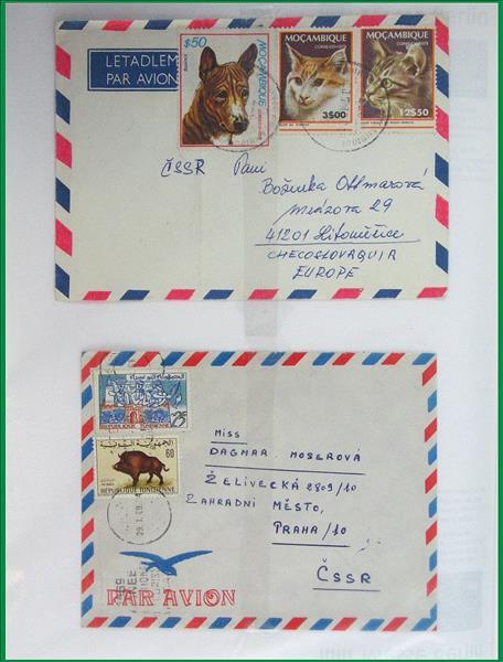 https://www.alfil.cz/catalog/19844_24_m.jpg