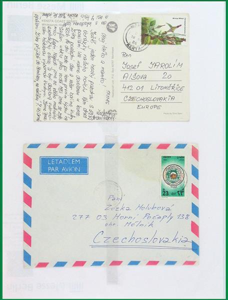 https://www.alfil.cz/catalog/19844_25_m.jpg