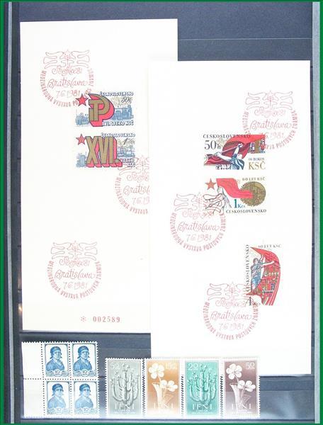 https://www.alfil.cz/catalog/5797_50_m.jpg